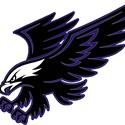 chuck nietsche Youth Teams - Hillcrest Hawks