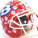 Bellport High School - Bellport Varsity Football
