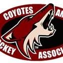 Jr. Coyotes AAA Hockey - Coyotes 2002 AAA
