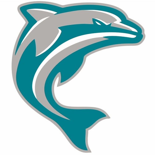 Oro Valley Dolphins-TYFSF - OV Dolphins 13U