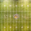 Pana High School - Boys Varsity Football