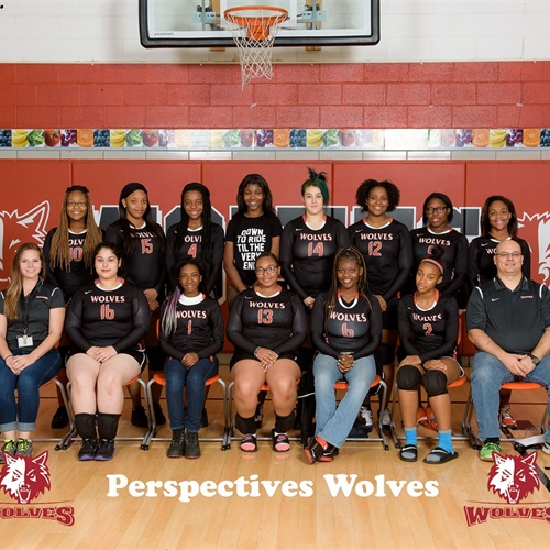 Perspectives Charter/MSA High School - Perspectives Charter/MSA Volleyball