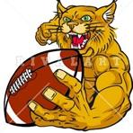 Wharton High School - Wharton Football