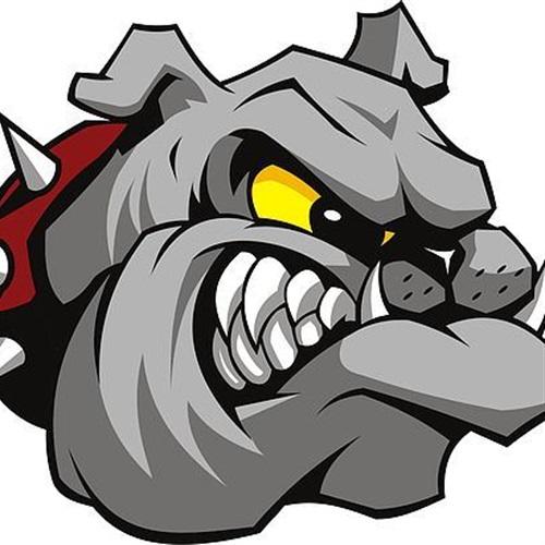 Wake Forest Alpha Dogs - JV