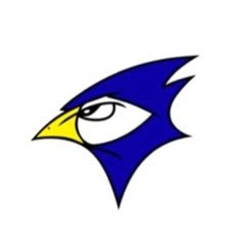 Johnson Creek High School - Johnson Creek Varsity Girls Basketball