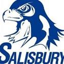 Salisbury Township High School - Boys Varsity Basketball