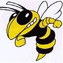 Hinsdale South High School - Girls Varsity Basketball