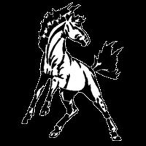 Clear Fork High School - Boys' Varsity Basketball - New