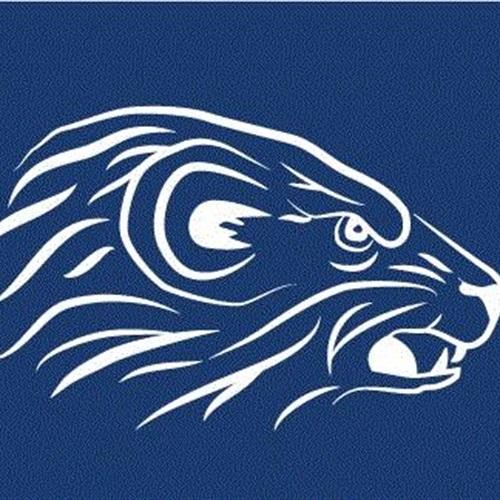 Algonac High School - Varsity Football