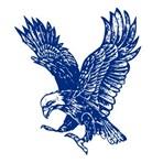 Overton Public School - Overton Public School Varsity Football