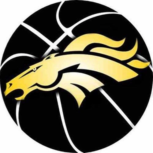 Sterling Heights High School - Girls Varsity Basketball
