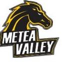 Metea Valley High School - Boys Varsity Football
