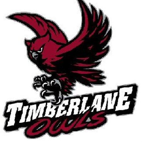 Timberlane High School - Boys Basketball