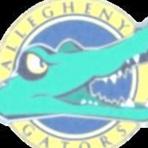 Allegheny College  - Mens Varsity Football