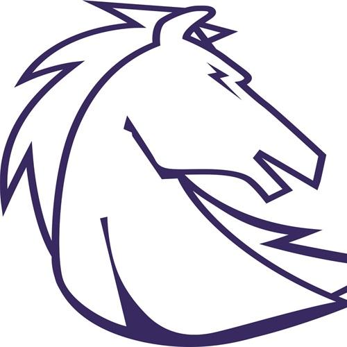 Clear Springs High School - Boys Varsity Football