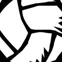 Michigan Elite Volleyball Academy - MEVBA - 17 Elite East 2017