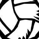 Michigan Elite Volleyball Academy - MEVBA - MEVBA 16 Elite