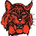 Bowling Green High School - Boys' Varsity Ice Hockey