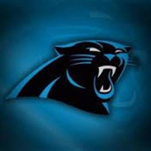 Panthers Athletic Cub - 70lb B