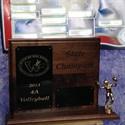 Natrona County High School - Girls' Varsity Volleyball