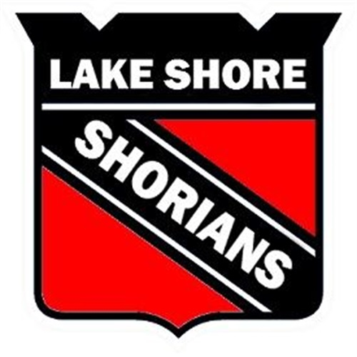 Lake Shore High School - JV Football 2016