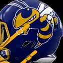 Fort Mill High School - Boys Varsity Football