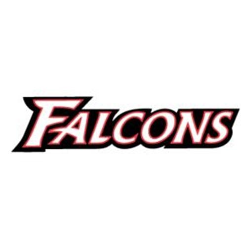 Niagara-Wheatfield High School - Falcons Varsity Football