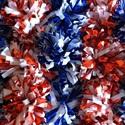 Racine Park Panthers  - Park Cheerleading