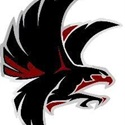 Lincoln Falcons - Falcons