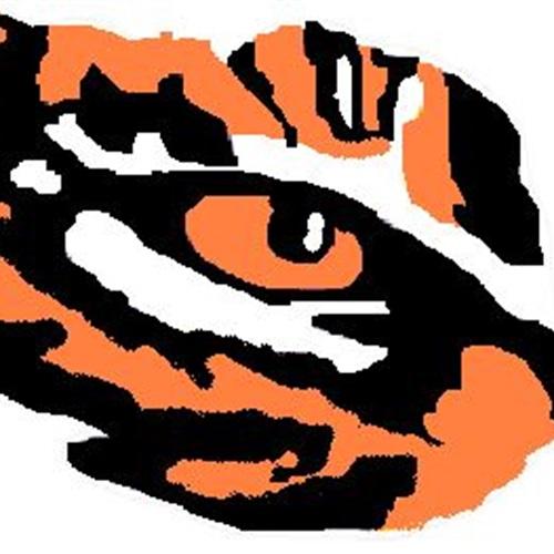 Strasburg-Franklin High School - Boys Varsity Football