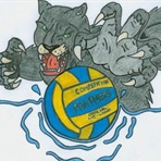 Cypress Springs High School - Water Polo