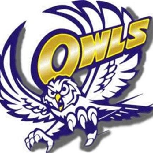 Reagan County High School - Boys Varsity Football