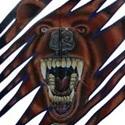 Danville High School - Danville Varsity Football