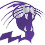 Duluth High School Logo