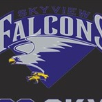 Skyview High School - Skyview Girls' Varsity Basketball