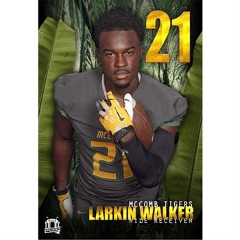 Larkin Walker
