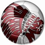 Martin High School - Martin Boys' Varsity Soccer