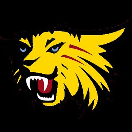 Wilson High School - Boys Varsity Football