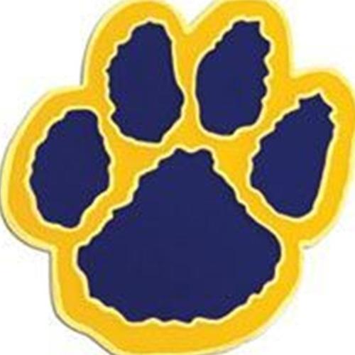 Crisp County High School - Girls Varsity Basketball