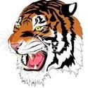 Ansonia High School - Ansonia Girls' Varsity Basketball