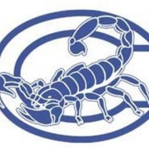 Camarillo High School - Freshman Football
