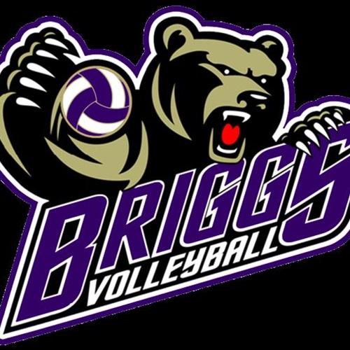 Briggs High School - Girls' Varsity Volleyball