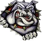 SW Calgary Bulldogs Football - CAMFA - BULL