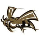 Mineral Springs High School - Boys Varsity Football