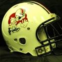 McKinley High School - Canton McKinley JV Bulldogs