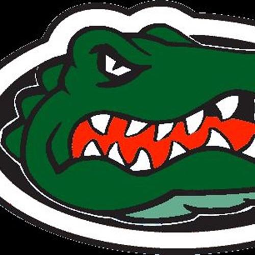 Lake View High School - Lake View Wild Gators