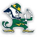 Irish - Springfield Irish (CYFL)