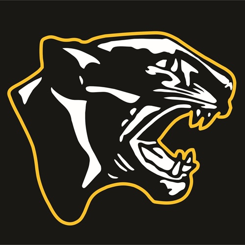 Peninsula High School - Boys Varsity Football