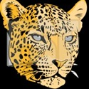 Cedar Shoals High School  - Men's Varsity Basketball
