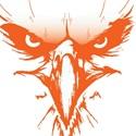 Avalon High School - Boys Varsity Football